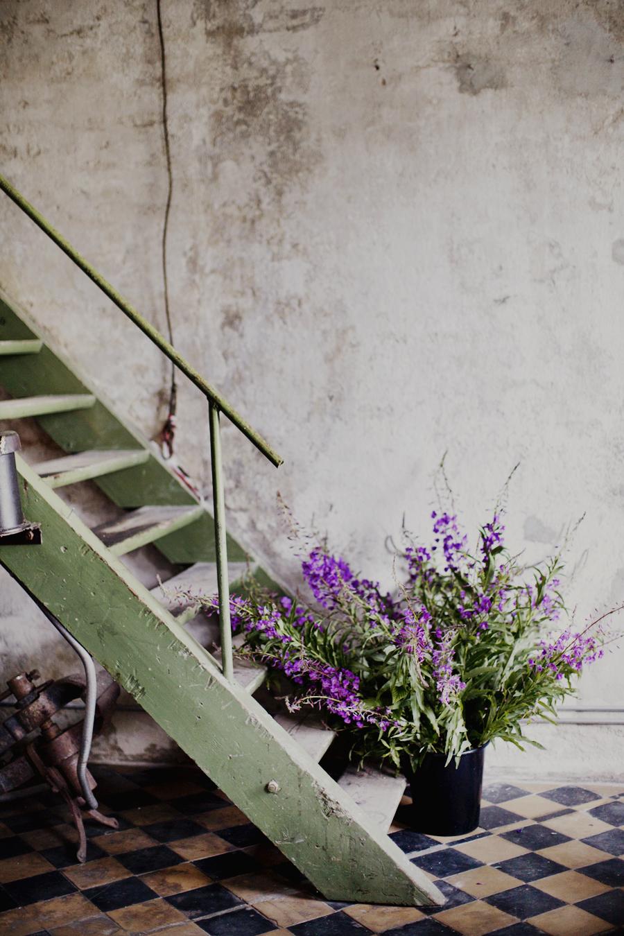 sankthans-gravid-blomster-blogg-2014-haslien-magebilde-graviditet-blog-pregnant-hverdag--03
