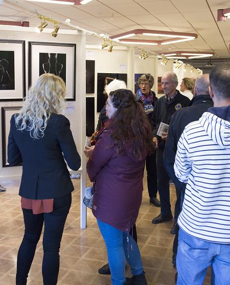 Flere tusen var innom utstillingen på Borg i regi av Lions i Skjeberg i helgen.