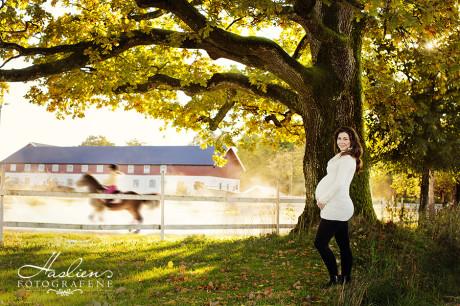 Gravidfoto høst ute