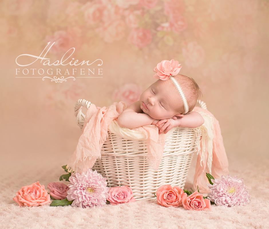 Fra en babyfotografering vi gjorde tidligere i år. Se flere nyfødtfoto i vårt temagalleri.
